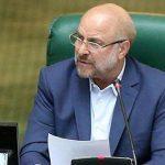 مجلس مطالبه گر اصلی توجه به اولویتهای فوری اقتصاد خواهد بود